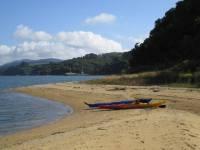 Highlight for Album: Tomales Bay Kayaking Tour